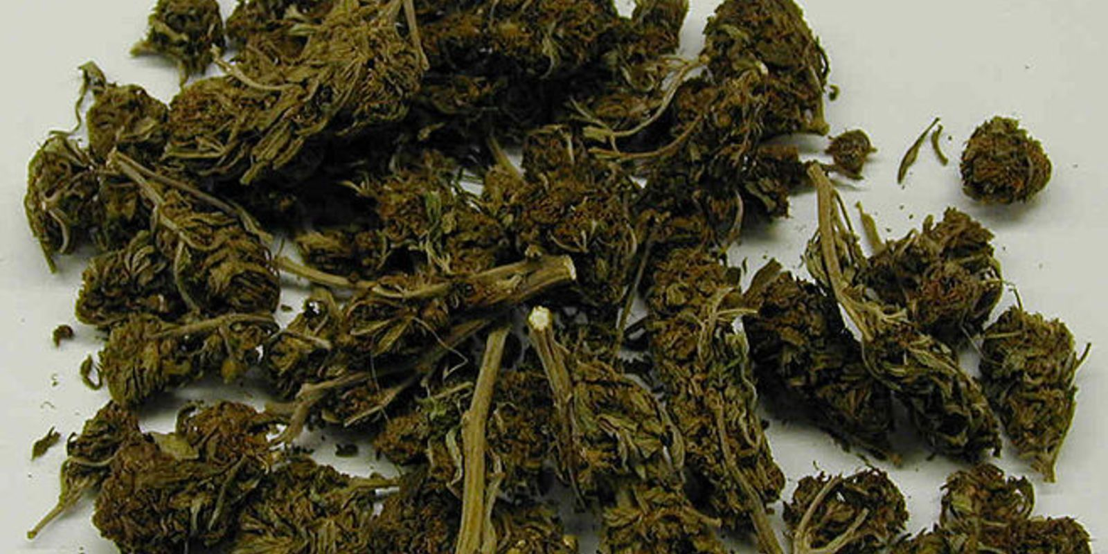 1529489544 34 marijuana wiki